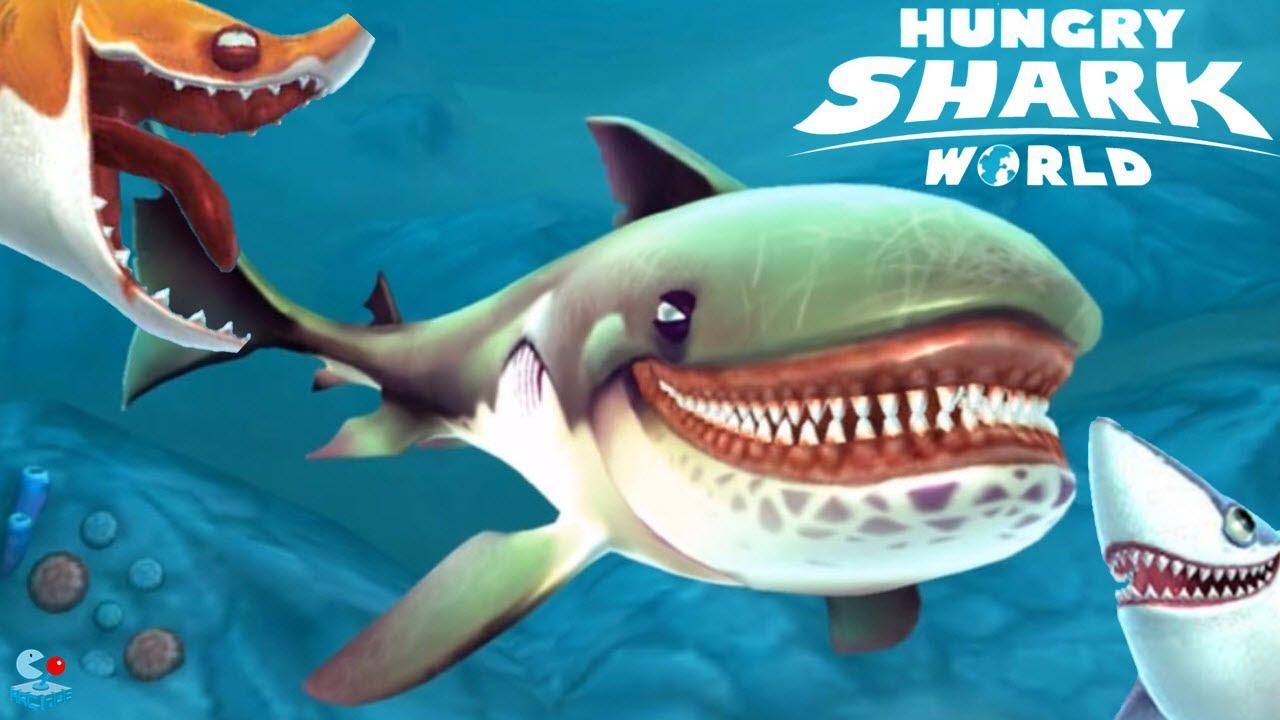 hsw04 - Copy